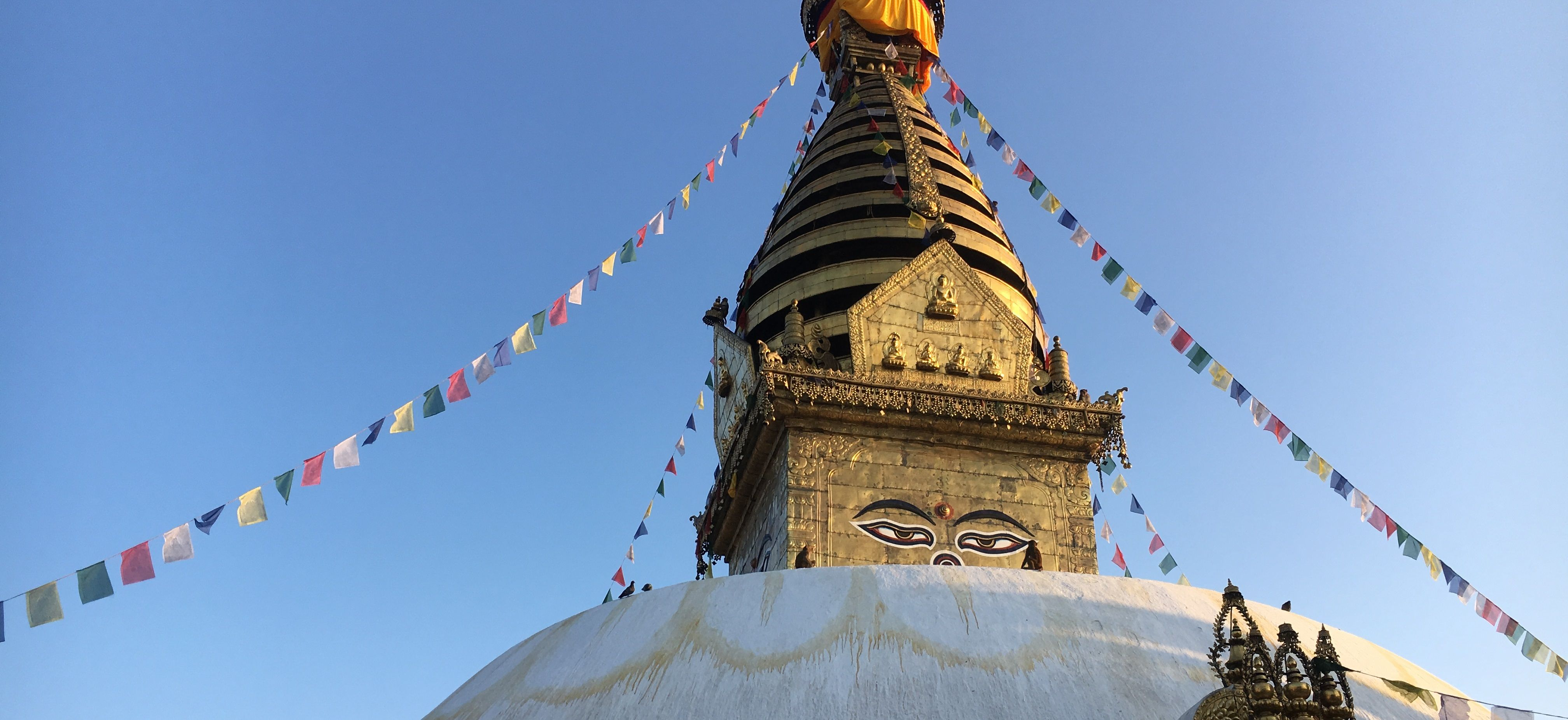 Cropped-for-banner-Nepal-Temple-TOFtigers-Library-compressor (1)